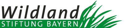 Wildland Stiftung Bayern