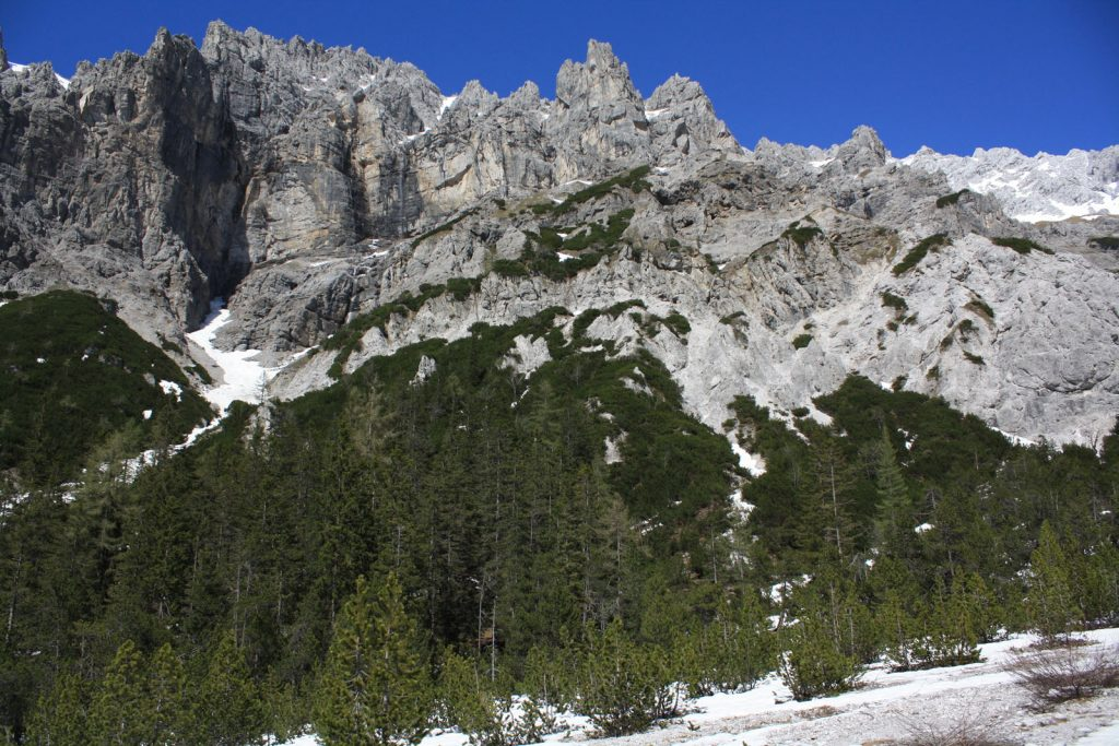Lebensraum des Alpenschneehuhns © M. E. Asmus/Piclease