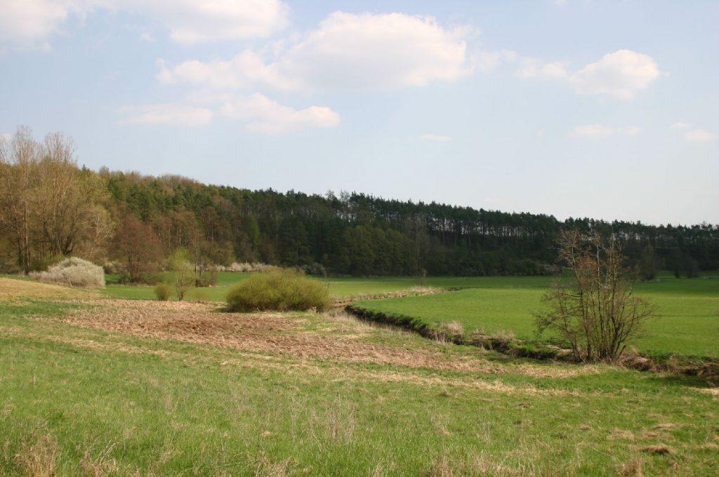 Tal der Baunach