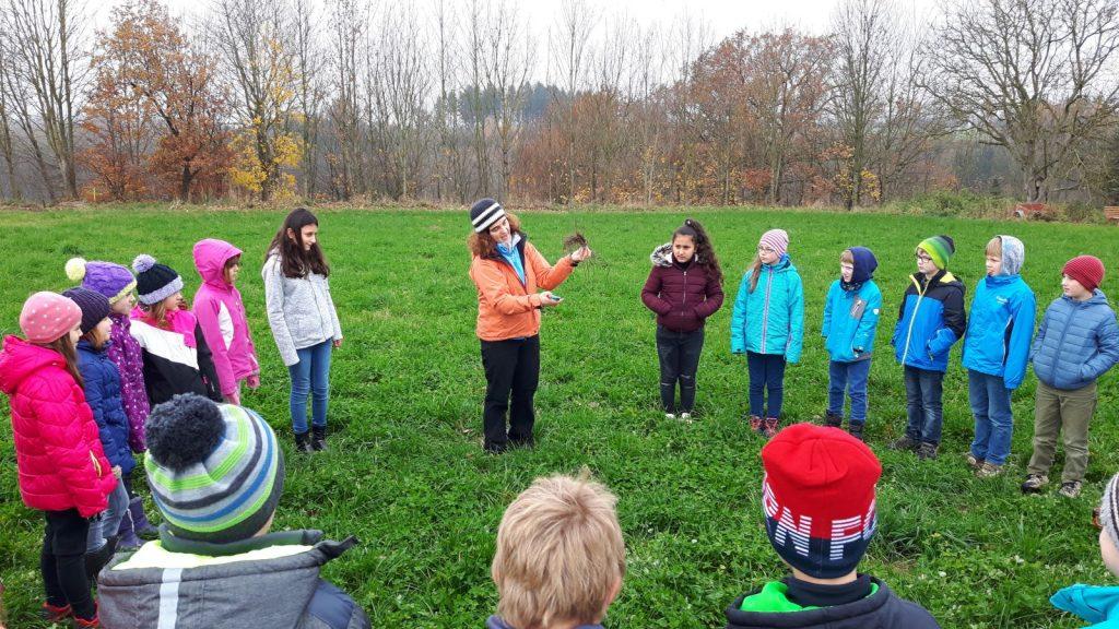Patrizia Weindl erklärt,  wie die Heckenpflanzen behandelt werden müssen, bevor sie in die Erde gebracht werden.